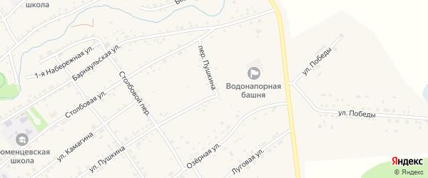Переулок Пушкина на карте села Тюменцево с номерами домов