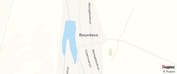 Карта села Вишневки в Алтайском крае с улицами и номерами домов