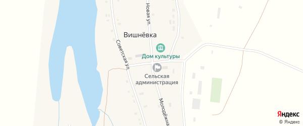 Молодёжная улица на карте села Вишневки с номерами домов