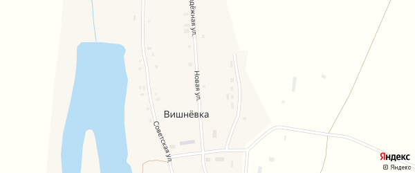 Новая улица на карте села Вишневки с номерами домов