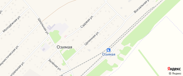 Целинная улица на карте Озимой станции с номерами домов