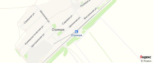 Карта Озимой станции в Алтайском крае с улицами и номерами домов