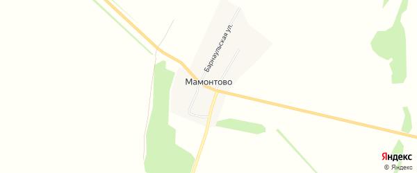 Карта поселка Мамонтово в Алтайском крае с улицами и номерами домов