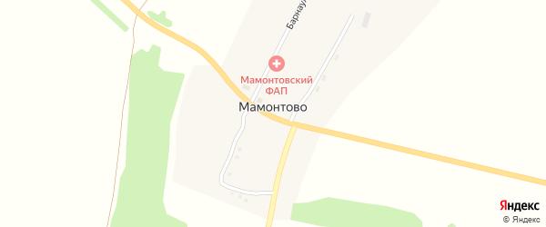 Новосибирская улица на карте поселка Мамонтово с номерами домов