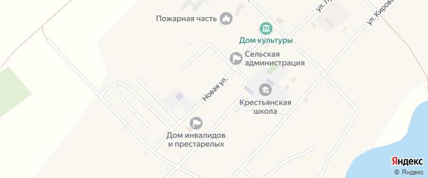 Новая улица на карте села Крестьянки с номерами домов