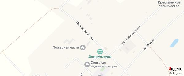 Пионерский переулок на карте села Крестьянки с номерами домов