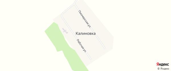 Пионерская улица на карте поселка Калиновки с номерами домов