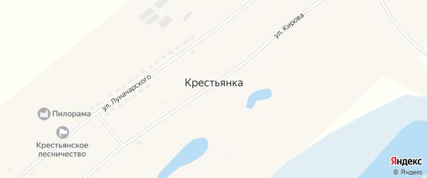 Береговая улица на карте села Крестьянки с номерами домов