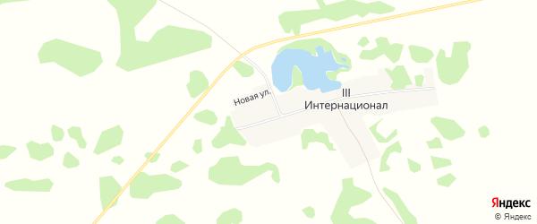 Карта поселка 3 Интернационала в Алтайском крае с улицами и номерами домов