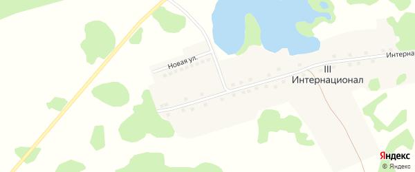 Новая улица на карте поселка 3 Интернационала с номерами домов