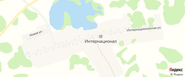 Интернациональная улица на карте поселка 3 Интернационала с номерами домов