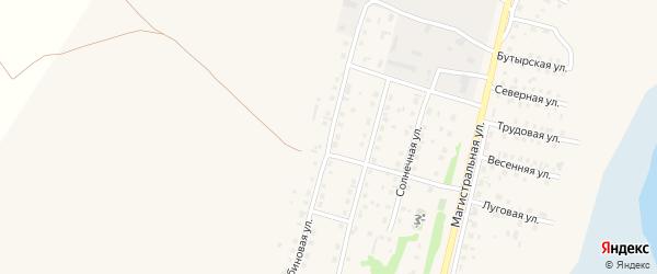 Рябиновая улица на карте села Мамонтово с номерами домов