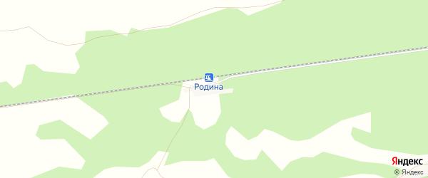Карта разъезда Родина в Алтайском крае с улицами и номерами домов