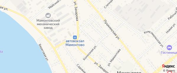 Степной переулок на карте села Мамонтово с номерами домов