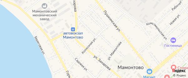 Колхозная улица на карте села Мамонтово с номерами домов