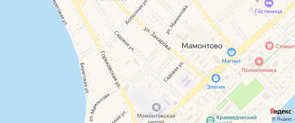 Улица Мамонтова на карте села Мамонтово с номерами домов