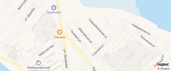 Юбилейная улица на карте села Мамонтово с номерами домов