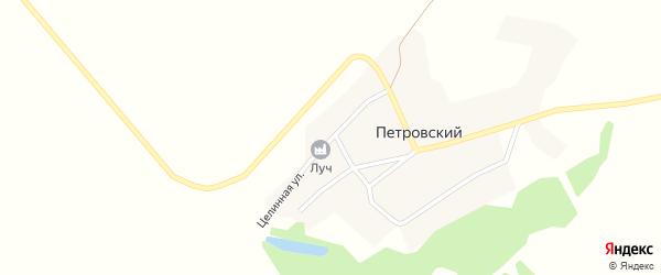 Целинная улица на карте Петровского поселка с номерами домов