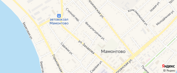 Переулок Мамонтова на карте села Мамонтово с номерами домов