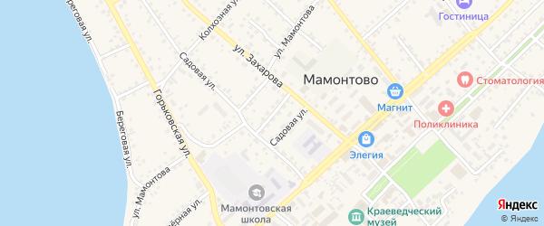 Строительная улица на карте села Мамонтово с номерами домов