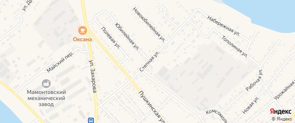 Степная улица на карте села Мамонтово с номерами домов