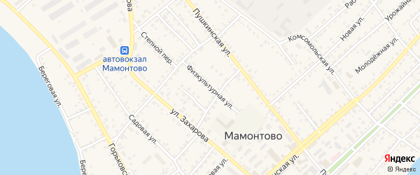 Физкультурная улица на карте села Мамонтово с номерами домов