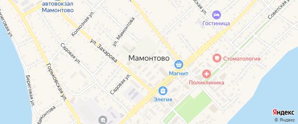 Береговая улица на карте села Мамонтово с номерами домов
