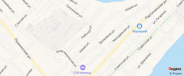 Новая улица на карте села Мамонтово с номерами домов