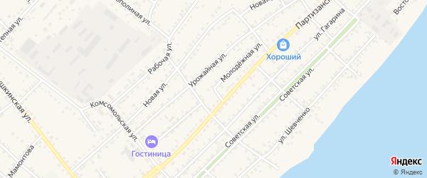 Молодёжная улица на карте села Мамонтово с номерами домов