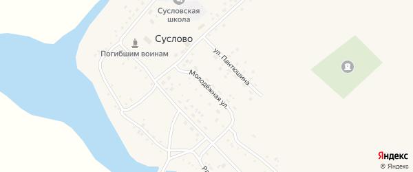 Молодежная улица на карте села Суслово с номерами домов