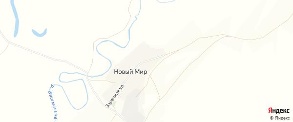Карта поселка Нового Мира в Алтайском крае с улицами и номерами домов