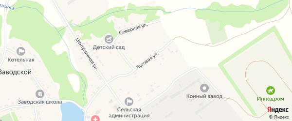 Луговая улица на карте Заводского поселка с номерами домов
