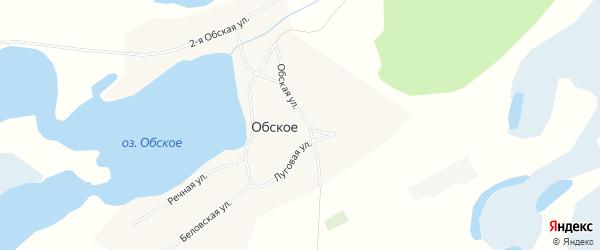 Карта Обского села в Алтайском крае с улицами и номерами домов