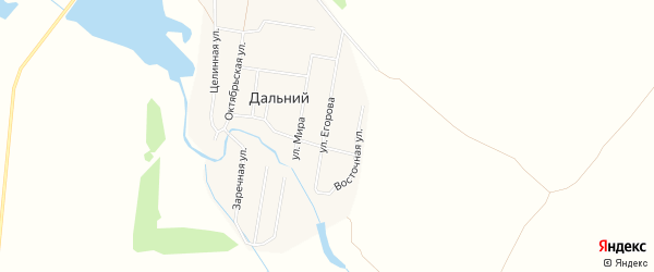 Карта Дальнего поселка в Алтайском крае с улицами и номерами домов