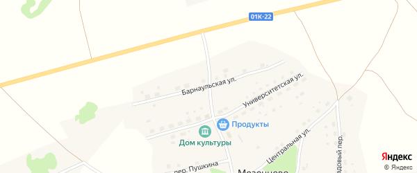 Барнаульская улица на карте села Мезенцево с номерами домов