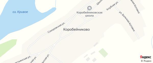 Центральная улица на карте села Коробейниково с номерами домов