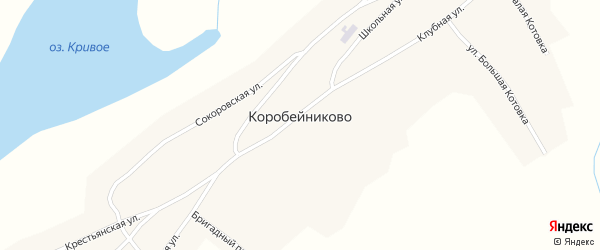 Бригадный переулок на карте села Коробейниково с номерами домов