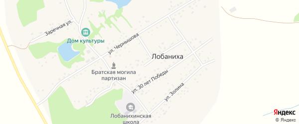 Октябрьская улица на карте села Лобанихи с номерами домов