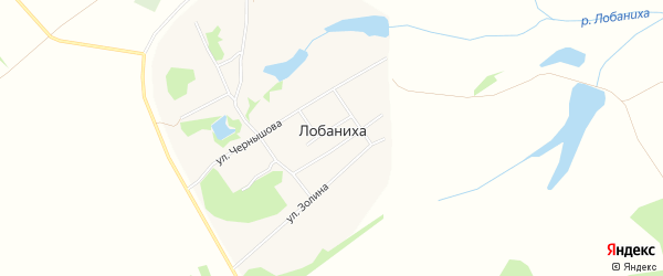 Карта села Лобанихи в Алтайском крае с улицами и номерами домов