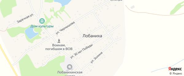Улица Чернышова на карте села Лобанихи с номерами домов