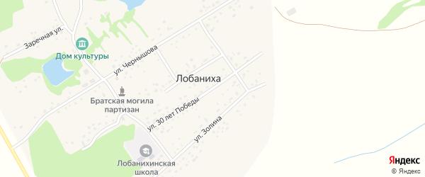 Улица 30 лет Победы на карте села Лобанихи с номерами домов