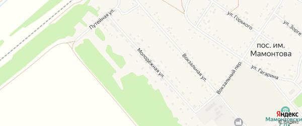Молодежная улица на карте поселка им Мамонтова с номерами домов