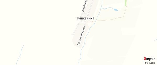 Карта поселка Тушканихи в Алтайском крае с улицами и номерами домов