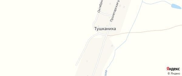 Октябрьская улица на карте поселка Тушканихи с номерами домов