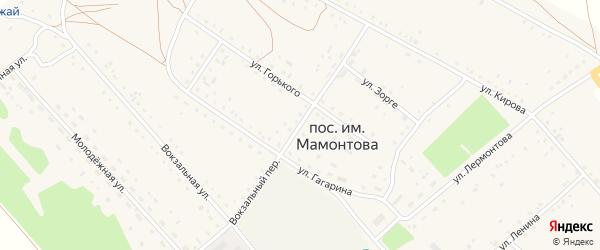 Вокзальный переулок на карте поселка им Мамонтова с номерами домов
