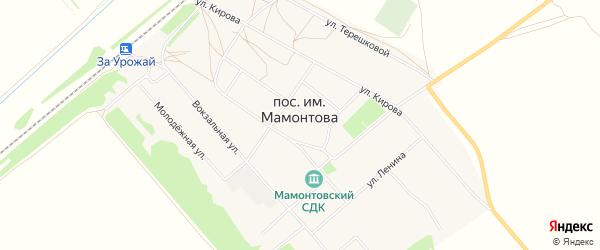 Карта поселка им Мамонтова в Алтайском крае с улицами и номерами домов