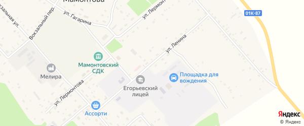 Улица Ленина на карте поселка им Мамонтова с номерами домов