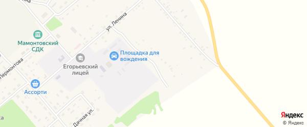 Алейская улица на карте поселка им Мамонтова с номерами домов