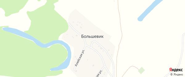 Алейская улица на карте поселка Большевика с номерами домов