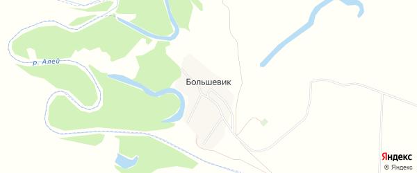 Карта поселка Большевика в Алтайском крае с улицами и номерами домов